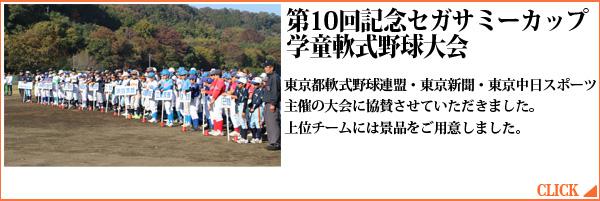 第10回セガサミーカップ学童軟式野球大会